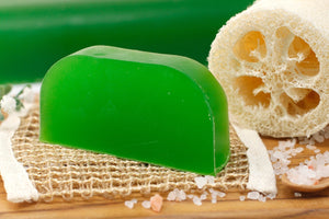 Argan Oil Solid Shampoo - Thyme & Mint