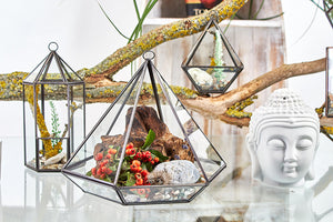 Load image into Gallery viewer, Glass Terrarium - Lantern Shape