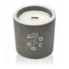 Load image into Gallery viewer, Concrete Candle: Med Pot - Mistletoe - Juniper & Sweet Gin