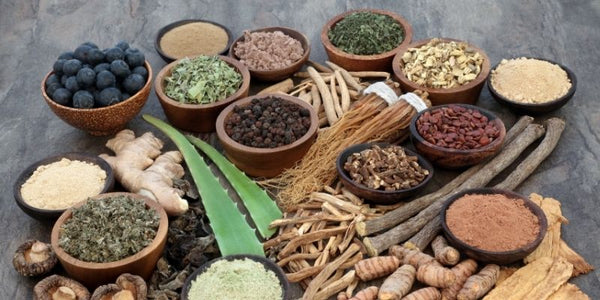 Good Lyfe Project Blog What are Adaptogens
