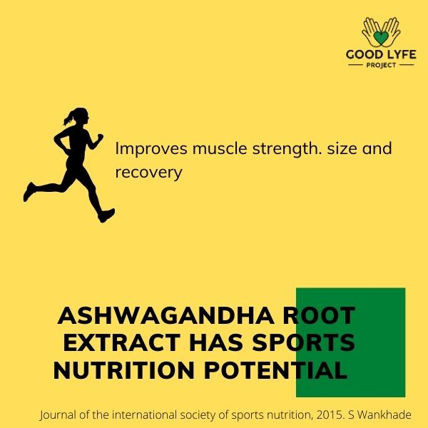 Buy Online Ashwagandha Powder Certified Organic India Made Sports Benefits