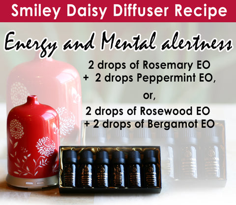 Smiley Daisy Love in a Mist Diffuser with JuJu Aroma Oil Gift Set