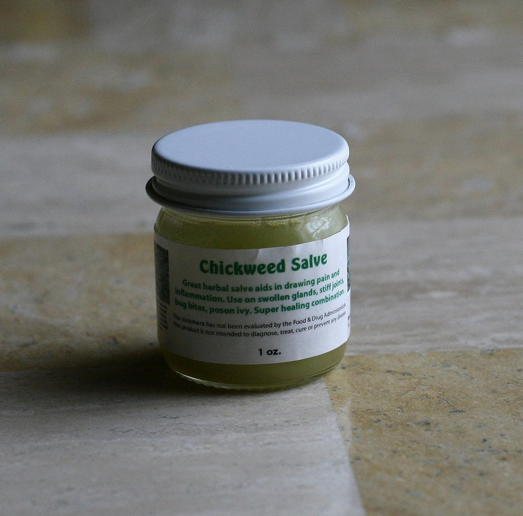Chickweed Salve for Pain Relief and Swelling and Skin Conditions