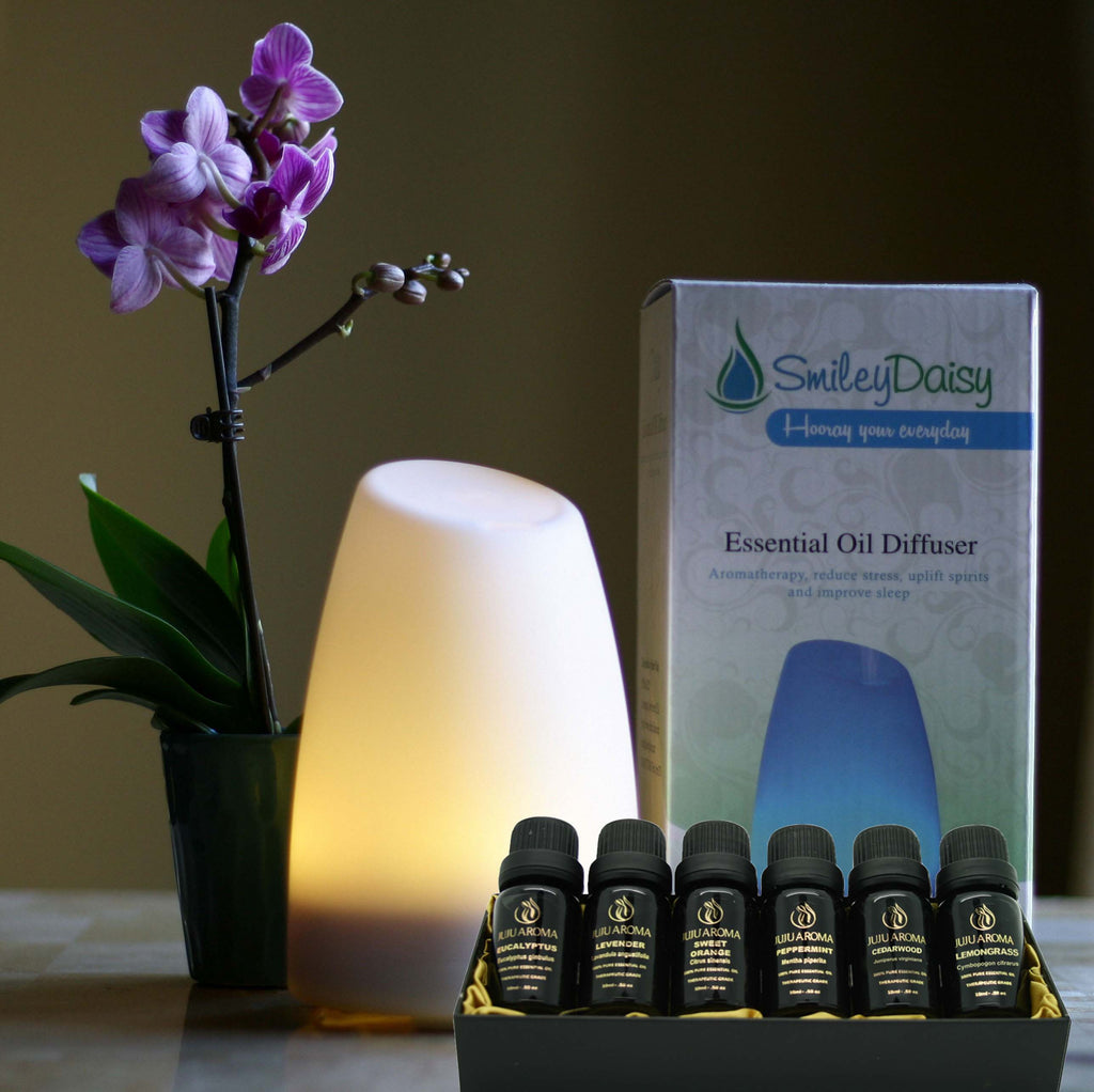 Daisy Diffuser with Essential Oil Gift Set Bundle