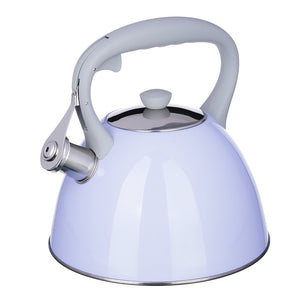 steel kettle beautiful two colors large free delivery 3 l