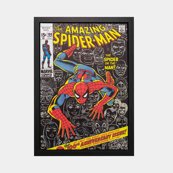 Stan Lee Signed: The Amazing Spider-man #100 Box Canvas Framed (Hors Commerce: 5/1) - worldofsuperheroesuk