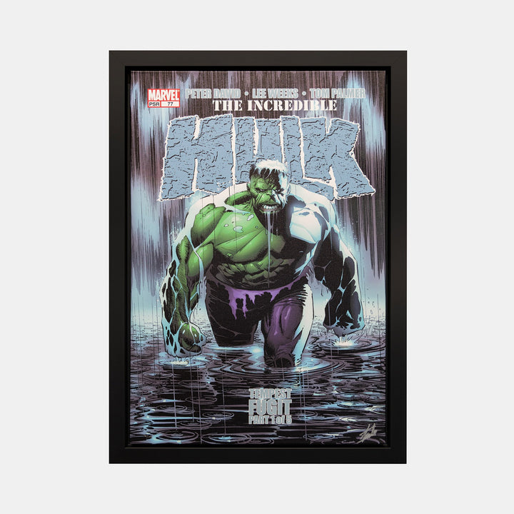 Stan Lee Signed: The Incedible Hulk #16 Tempest Fugit Box Canvas Framed - worldofsuperheroesuk