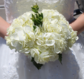 White Hydrangea Bouquet | #MarriedInVegas Studios