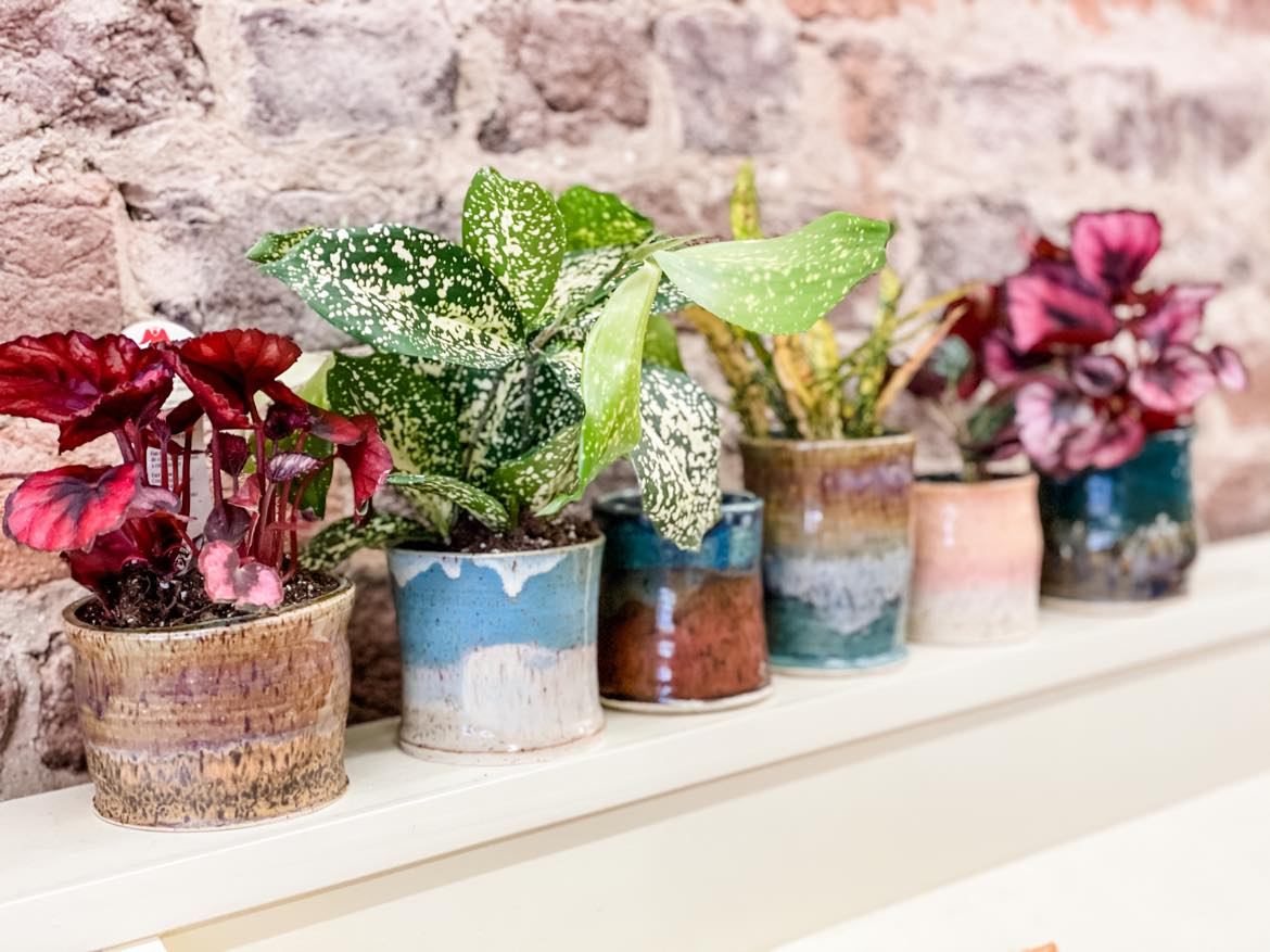 May 13th @ 6pm Hand Thrown Pots & Plants Night