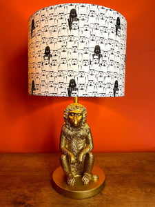 Stormtrooper with darth vader lampshade black and white monochrome for lamp fitting
