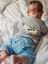 Cargar imagen en el visor de la galería, 100% certified organic cotton jumper and pants set colorful cats Cotton Pigs eco-friendly children's and baby clothing