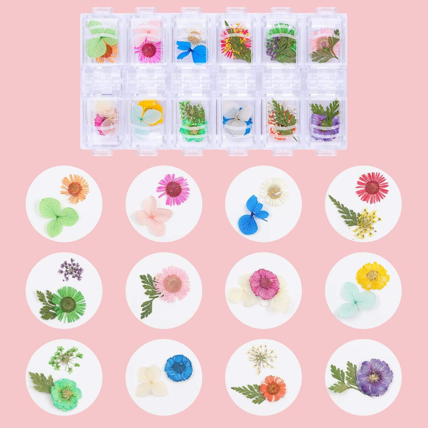 Boutique Florists Dried Flowers and Nail Extension Gel in Clear (50ml) Set - Makartt