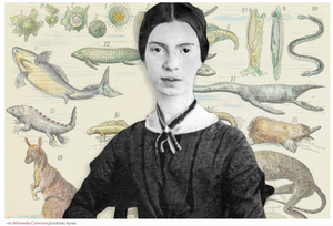 Emily Dickinson Stops for Science