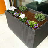 The Planters - Customize!
