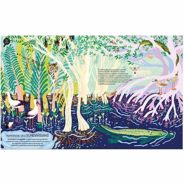 Kid's book - Jungles and nature reserves of the world