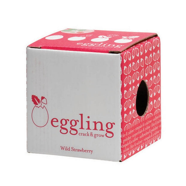 NOTED - Eggling strawberries box