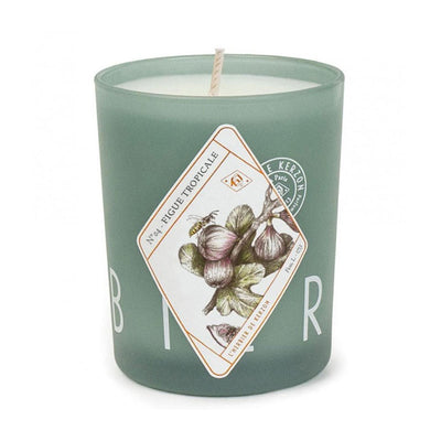 Scented candle - Figue Tropicale