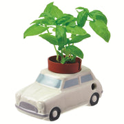 NOTED - Self watering plant - White car