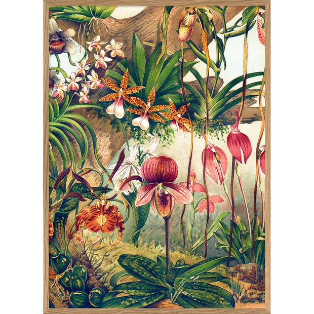 THE DYBDAHL CO - Orchids wall poster - 70 x 100 cm