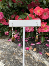 Load image into Gallery viewer, Tiger's Eye Earrings - Meg's Mystics
