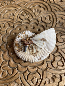 Wire Wrapped Fossilized Lemon Shark Tooth Pendant - Meg's Mystics