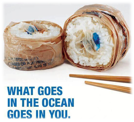 What goes into the ocean goes into you - plastic