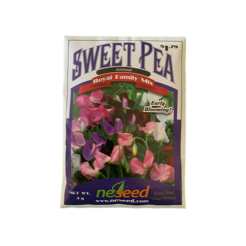 Sweet pea 'Royal Family Mix'