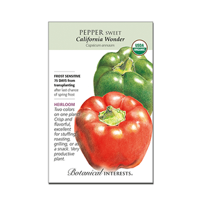 Sweet Pepper 'California Wonder' Organic