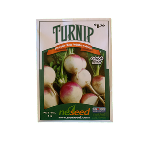 Turnip 'Purple Top White Globe'