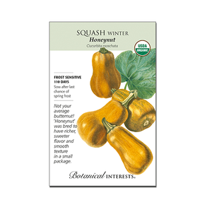 Squash 'Winter Honeynut' Organic