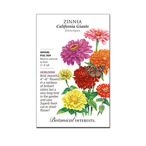 Zinnia 'California Giants'