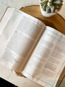 She Reads Truth Bible
