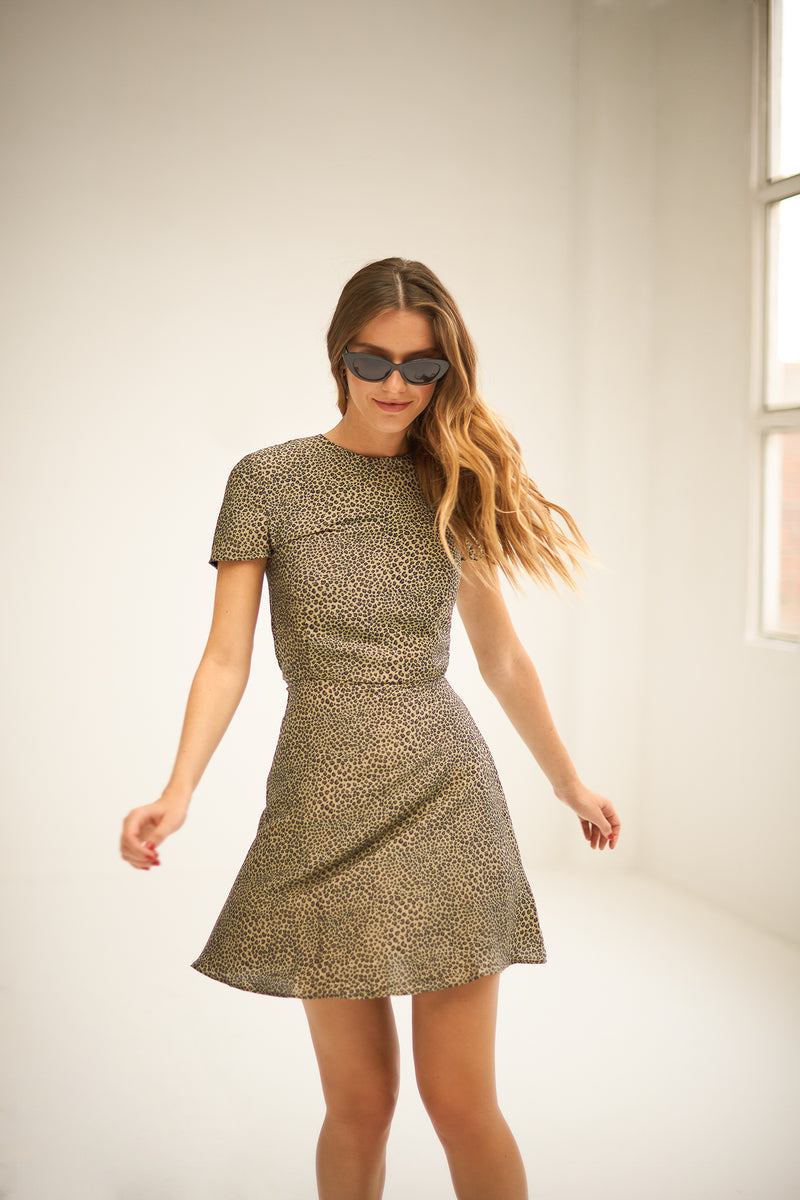 Dacil animal print dress