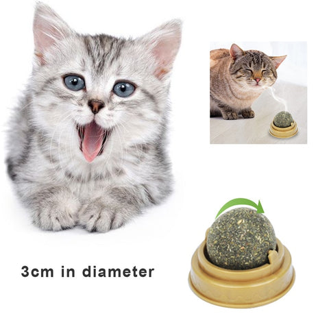 Pets Cat Toys Interactive Track Ball Toy Cats Fun Cat Game Intelligence  Disc Cat For Toy Balls For Traning