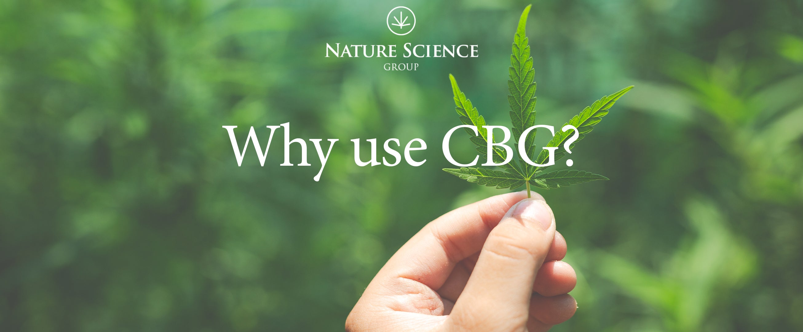 Nature Science Group - Масло премиум-класса Nature Science Absolute CBG