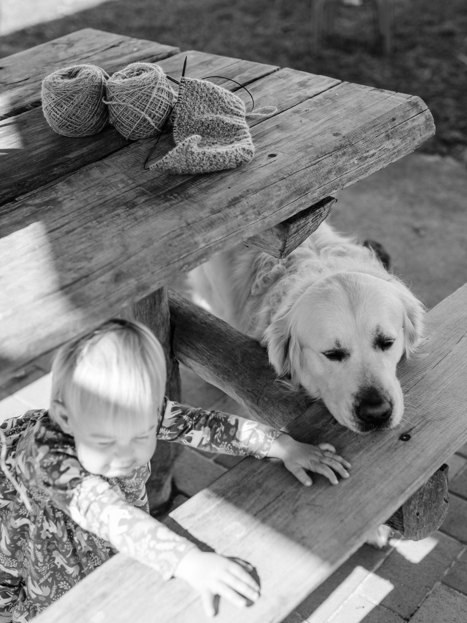 This darling home handspun yarn/knitting on a picnic table with Chester the golden retriever and a little girl playing underneath