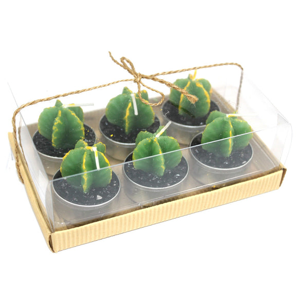 Set of 6 Cactus Tealights in Gift Box | 3 Varieties
