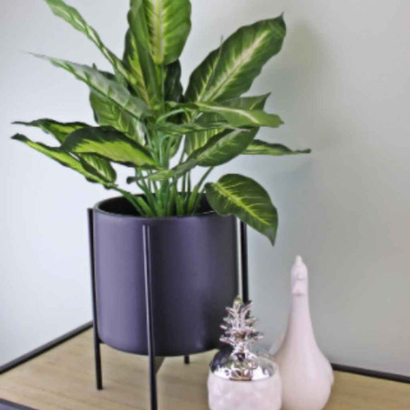 Adjustable Plant Pot | Black | Iron Stand | 2 sizes