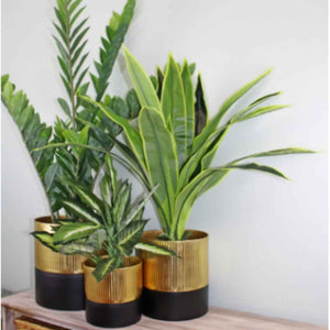 Planter Set | Metal | Gold & Black