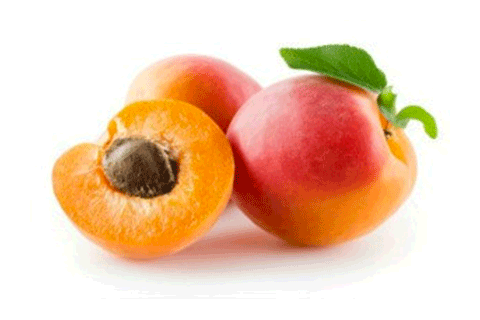 Certified Organic Apricot Kernel Oil