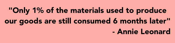 Conscious Consumer Guide: Annie Leonard reveals data about the manufacturing industry