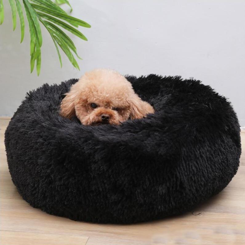 Black Griffin Dog Bed