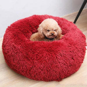 Red Griffin Dog Bed