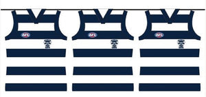 Geelong Cats 5 Metres Official AFL Team Party Bunting