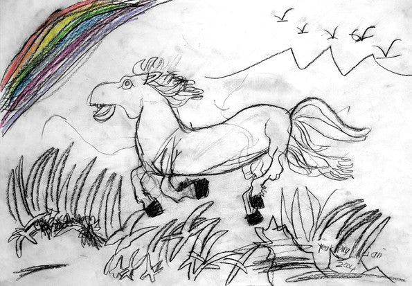 04301 Chasing the  Rainbow - Painted at age 10 (Limited Edition of 100)