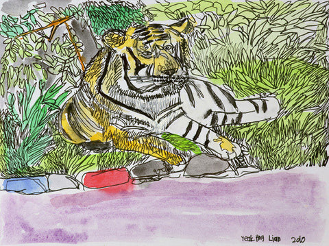 "10403 Tiger III- Painted at age 16 -Print on A3 Size Paper - 11.6""x 16.5"""
