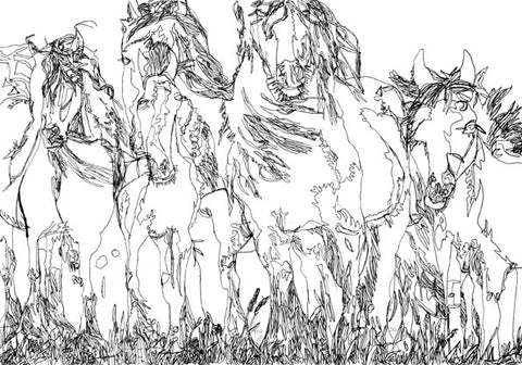"12301 Horses - Drawn in 2012 -Print on A3 Size Paper - 11.6""x 16.5"""