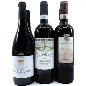 Bistecca's 'Summer Reds' #1 Red Wine Six-Pack