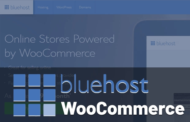 Bluehost eCommerce Online Stores Powered by WooCommerce