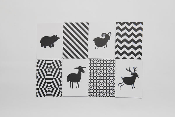 Black and White High Contrast Sensory Flash Cards